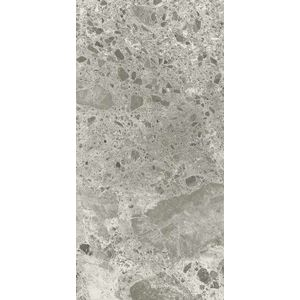 Grigio Luminoso Polished 120x60