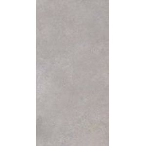 Gray Rectified 120x240