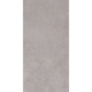 Gray Rectified 160x320