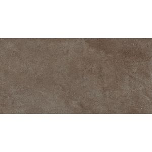 Limestone Brown 120x60