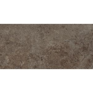 Limestone Brown 45x90