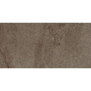 Limestone Brown 60x30