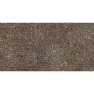 Limestone Brown Antislip 60x30